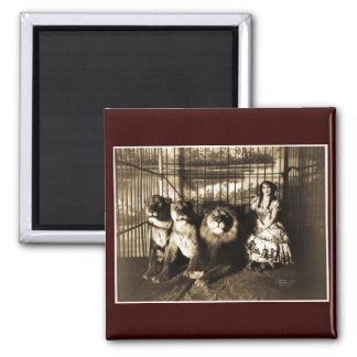 Adjie and the Lions 1899 2 Inch Square Magnet