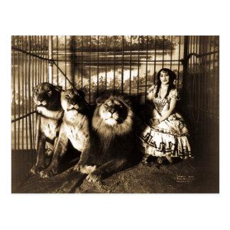 Adjie y el circo 1899 del vintage de los leones tarjetas postales