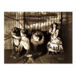 Adjie y el circo 1899 del vintage de los leones postales