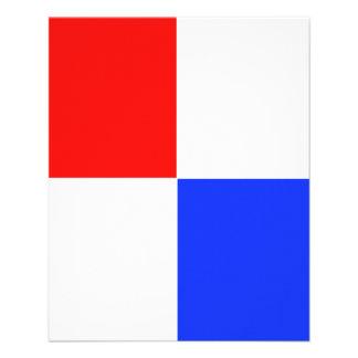 ADJUSTABLE Red, White & Blue Flyer