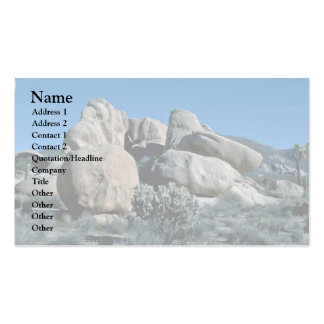 Adjusted By Nature Double-Sided Standard Business Cards (Pack Of 100)