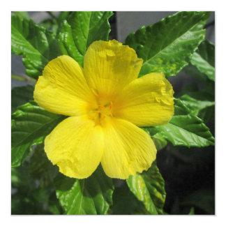 "Adler amarillo precioso invitación 5.25"" x 5.25"""