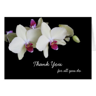 Administrative Professionals Day Card -- Orchids