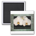 Administrative Professionals Day White Orchids Fridge Magnets