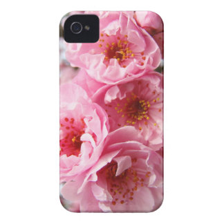 Administrative Professionals gifts Blackberry case