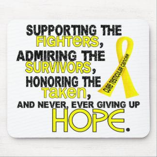 Admiración favorable honrando al cáncer testicular alfombrilla de raton