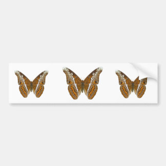 Admiral Butterfly Bumper Sticker