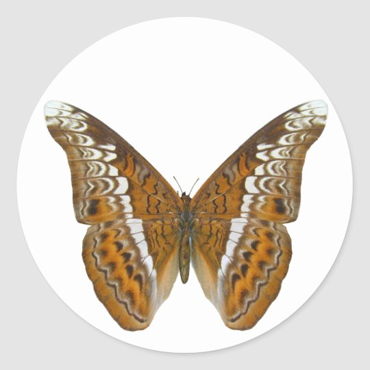 Admiral Butterfly Classic Round Sticker