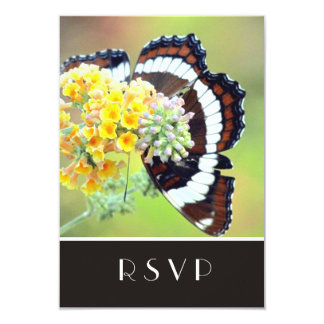 Admiral Butterfly  RSVP Card
