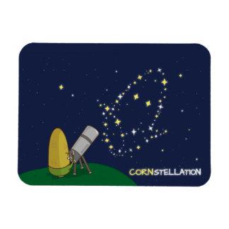 Admire el maíz endeble lindo de la constelación de iman