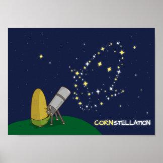 Admire el maíz endeble lindo de la constelación de póster