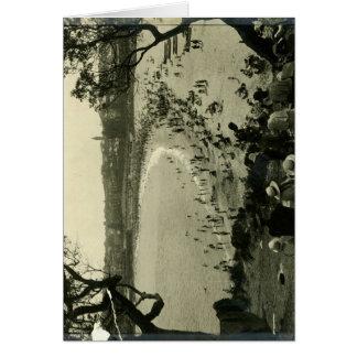 Admiring Coogee Beach c.1940 Card