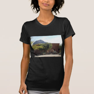 Adobe Building with Trees T-Shirt