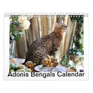 AdonisBengals Calendar- 2014 Calendar