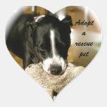 Adopción del mascota del rescate calcomanía de corazón