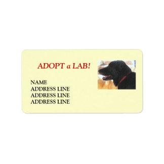 Adopción del perro del refugio del laboratorio - r etiqueta de dirección
