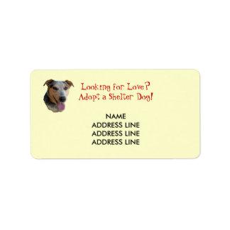Adopción del perro del refugio - remite occidental etiqueta de dirección