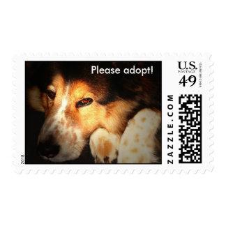Adopción del perro sello postal