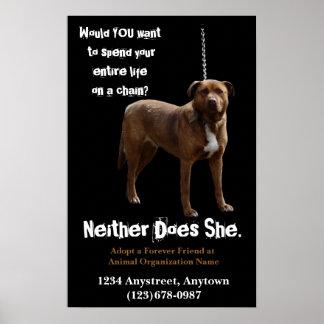 Adopción y rescate de los derechos de los animales poster