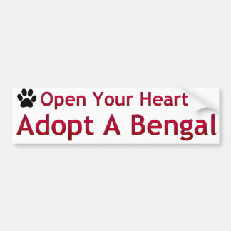Adopt a Bengal Bumper Sticker