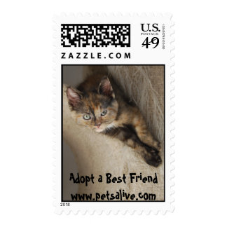 Adopt a Best Friend - Customized Stamp