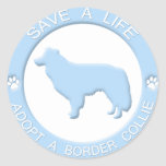 Adopt a Border Collie Stickers