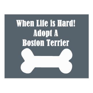 Adopt A Boston Terrier Postcard