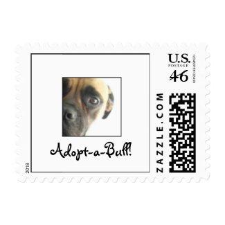 Adopt-a-Bull! stamp