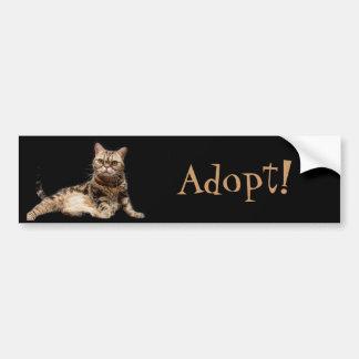 Adopt A Cat Bumper Sticker Car Bumper Sticker