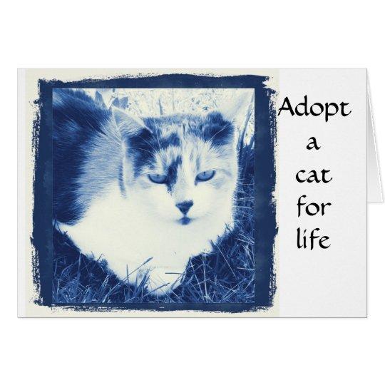 Adopt a cat card