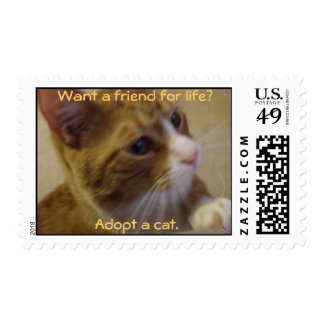 Adopt a Cat Postage