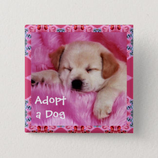Adopt a Dog Button