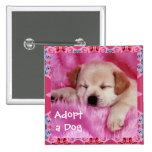 Adopt a Dog Button
