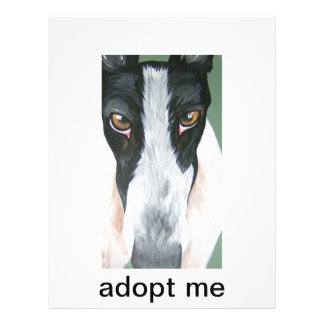 Adopt a greyhound full color flyer