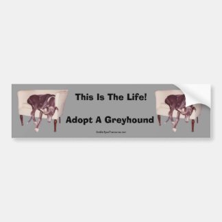Adopt A Greyhound This Is The Life Bumper Sticker