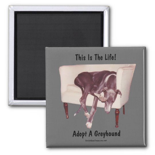 Adopt A Greyhound This Is The Life Magnet