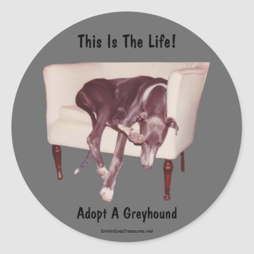 Adopt A Greyhound This Is The Life Sticker