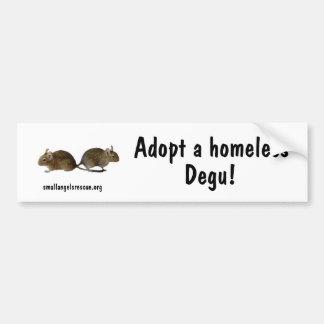 Adopt a homeless Degu! Bumper Stickers