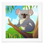 Adopt A Koala! Photo Print