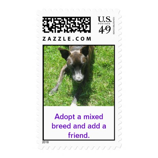 Adopt a Mixed Breed Postage