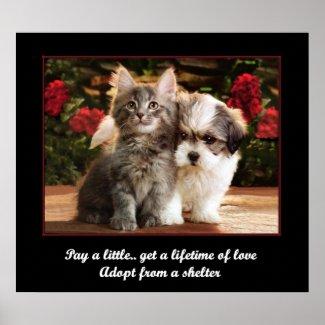 Adopt A Pet Posters