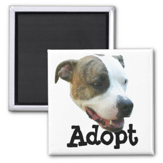 Adopt a Pit Bull 2 Inch Square Magnet
