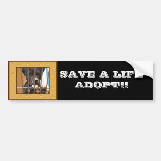 Adopt a puppy bumper sticker