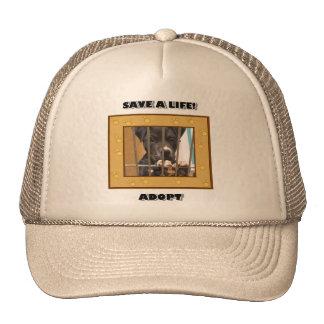 Adopt a puppy hat