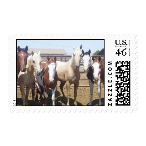 Adopt a Rescue Horse Postage Stamps