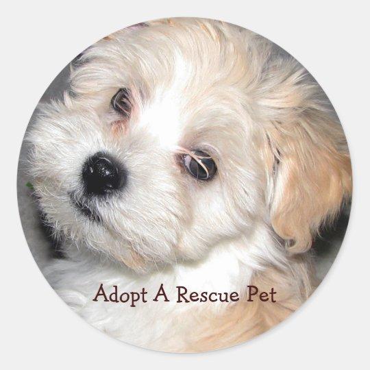 Adopt A Rescue Pet Classic Round Sticker