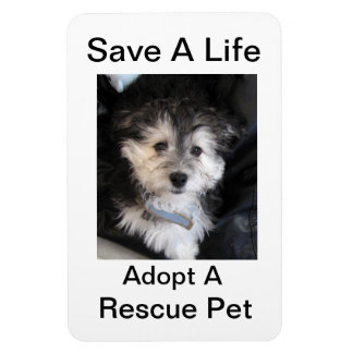 Adopt a Rescue Pet Magnet