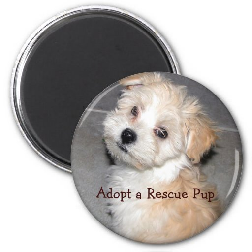 Adopt a Rescue Pup 2 Inch Round Magnet