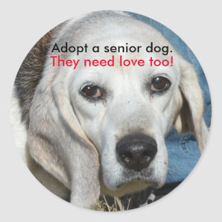 Adopt a senior dog. They need love too! Classic Round Sticker
