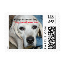 Adopt a senior dog. They need love too! Postage